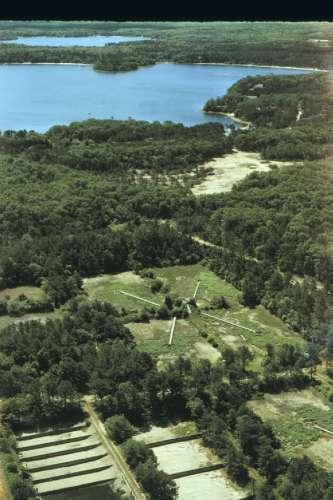 Anammox Research Site on Cape Cod