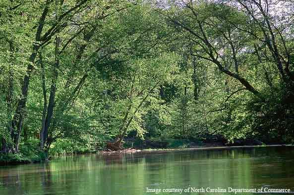 The Eno River, Durham. The waterways of North Carolina are an important part of the state's economy, so protecting their long-term quality was one of the main drivers on the project.