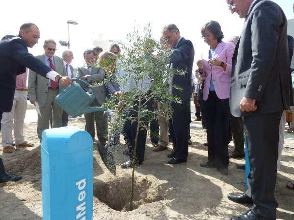 Spanish Minister of Environment, Rural and Marine Affairs Rosa Aguilar and other dignitaries planting a tree on the occasion of the commissioning of the new desalination plant in Cuevas de Almanzora. Image courtesy of the Spanish Ministry of Agriculture, Food and Environment.
