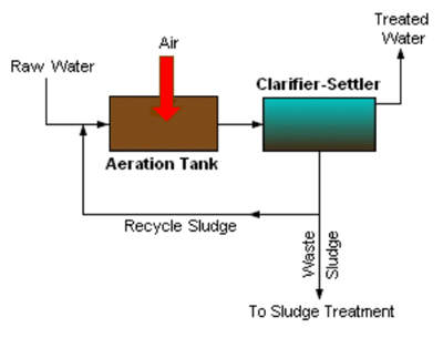 The activated sludge system for treatment of waste.
