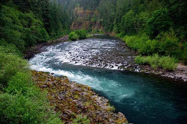 Clackamas River water will be treated at the WTP and then supplied to the cities of Lake Oswego and Tigard. Image courtesy of Gary Halvorson, Oregon State Archives.