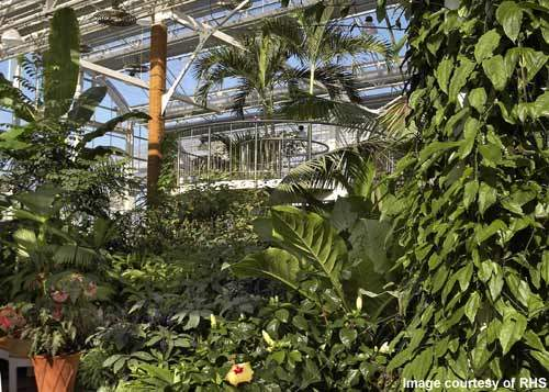 The glasshouse has three main planting zones: dry temperate, moist temperate and tropical.