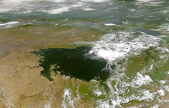 Satellite image of Lake Victoria; the raw water for the Gaba plants is drawn from Lake Victoria's Murchison Bay. Water quality has been adversely affected by pollution and drought.