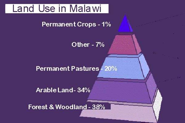 Pyramid chart of land usage in Malawi. In a country of 94,080km² of land, only around 300km² is irrigated.