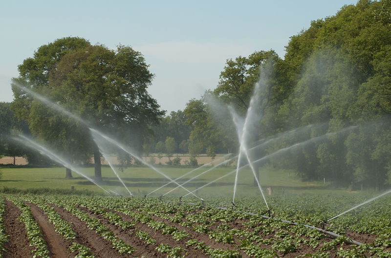 Tri-Tech will promote Rubicon's irrigation systems in China.