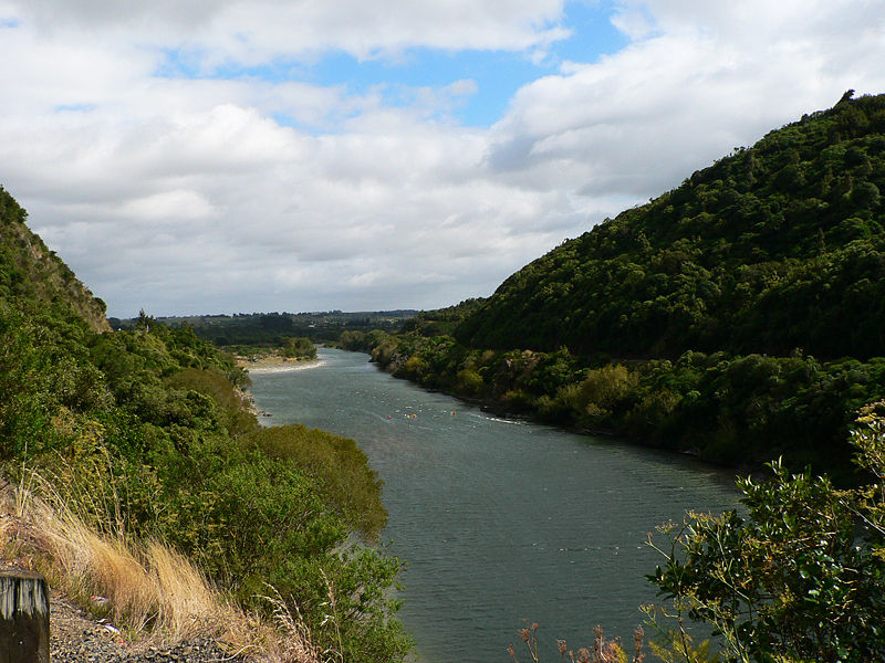 The Palmerston North City has proposed a plan to reduce the negative effect of wastewater discharge on Manawatu River in New Zealand.